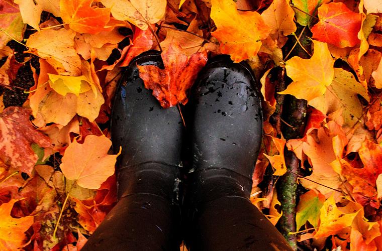 Schicke, nachhaltige Schuhe für den Herbst